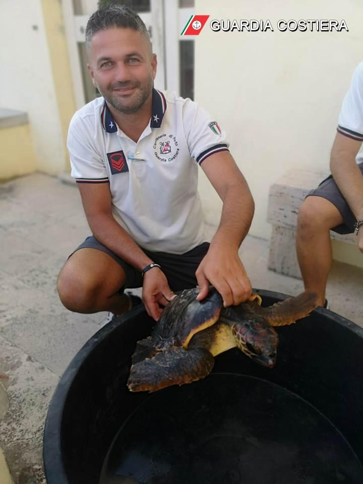La Guardia Costiera recupera esemplare di tartaruga comune marina