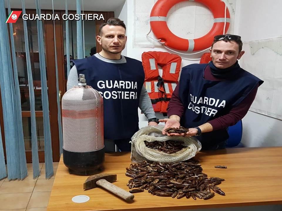 """foto1 Gaeta la Guardia Costiera dichiara guerra ai predoni del mare """"datterari"""""""