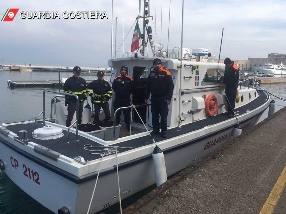ricci1-1 Guardia Costiera sequestro di ricci di mare e sanzioni per oltre 1000 Euro