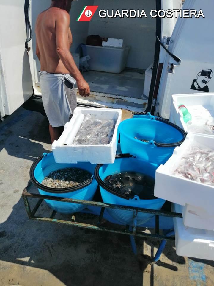 Foto-1 Guardia Costiera: altro sequestro di prodotto ittico venduto in spiaggia sotto il sole tra i bagnanti